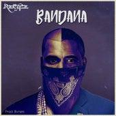 Bandana by The Recipe
