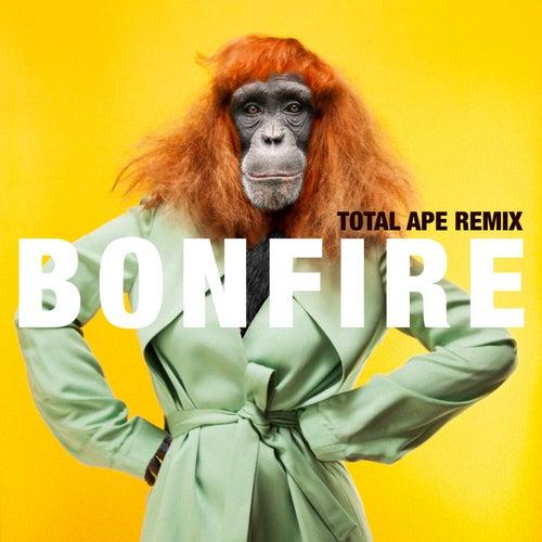 Bonfire (Total Ape Remix) by Miss Li