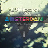 Amsterdam Night Grooves, Vol. 3 by Various Artists