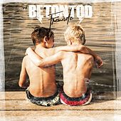 Freunde by Betontod