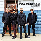 The James Montgomery Blues Band by James Montgomery Band