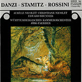 Danzi, Stamitz & Rossini: Music for Flute, Clarinet & Orchestra by Various Artists