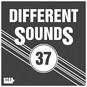 Different Sounds, Vol. 37 by Various Artists