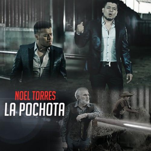 La Pochota by Noel Torres