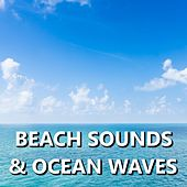 Beach Sounds & Ocean Waves by Ocean Sounds (1)