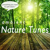 Ambient Nature Tunes by Various Artists