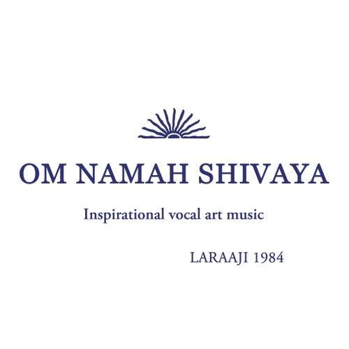 Om Namah Shivaya by Laraaji