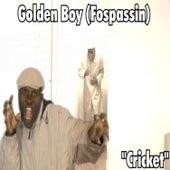 Cricket by Golden Boy (Fospassin)