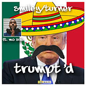 Trump'd by Turner