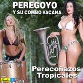 Perecoñazos Tropicales by Peregoyo Y Su Combo Vacana