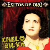 Exitos de Oro by Chelo Silva