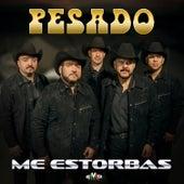 Me Estorbas by Pesado