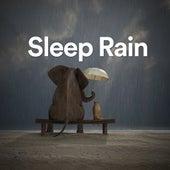 Sleep Rain by Various Artists