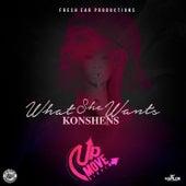 What She Wants - Single by Konshens