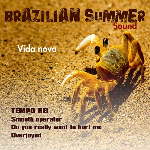 Vida Nova (Brazilian Summer Sound) by Tempo Rei