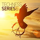 Techness Series 6 by Various Artists