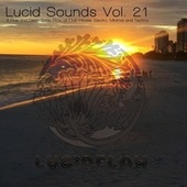 Lucid Sounds, Vol. 21 - A Fine and Deep Sonic Flow of Club House, Electro, Minimal and Techno by Various Artists