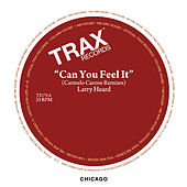 Can You Feel It (Carmelo Carone Remixes) by Larry Heard