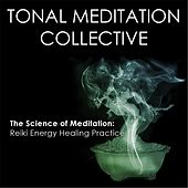 Reiki Energy Healing Practice by Tonal Meditation Collective