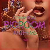 Commercial Bigroom Anthems, Vol. 3 by Various Artists