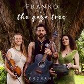 Enchant de Franko