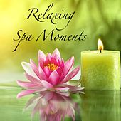 Relaxing Spa Moments by Various Artists