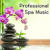 Professional Spa Music by Various Artists