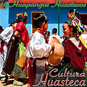 16 Huapangos Cultura Huasteca by Various Artists