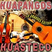 19 Grandes Exitos Huapangos Huastecos by Various Artists