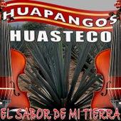 El Sabor De Mi Tierra Huapangos Huastecos by Various Artists