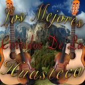 Los Mejores Corridos de la Huasteca by Various Artists