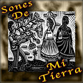 Sones de Mi Tierra by Various Artists