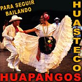 Para Seguir Bailando Huapangos Huastecos by Various Artists