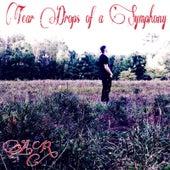 Tear Drops of a Symphony by AR