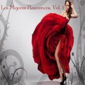 Los Mejores Flamencos, Vol. 1 by Various Artists