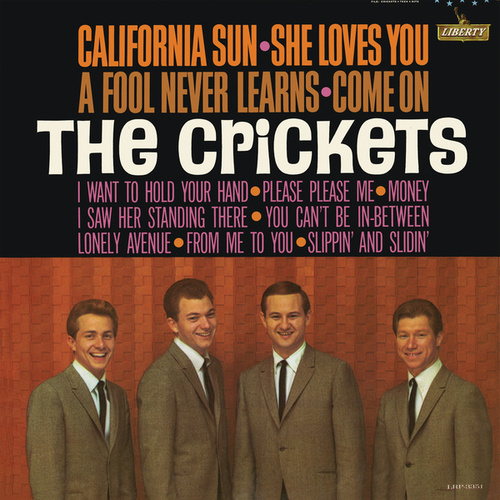 California Sun - She Loves You by Bobby Vee
