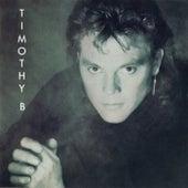 Timothy B by Timothy B. Schmit