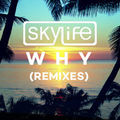 Why by The Sky Life