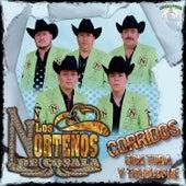 Corridos Con Tuba y Tololoche by Los Nortenos De Cosala