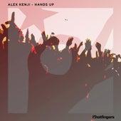 Hands Up by Alex Kenji