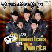 Seguimos Arremangando by Los Dinamicos Del Norte