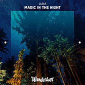Magic in the Night - Single by Luna