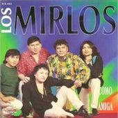 Como Amiga by Los Mirlos