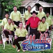 Candil de la Calle by Malilo y Su Banda Reforma