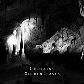 Golden Leaves (Demo Version) by The Curtains