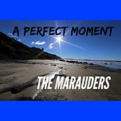 A Perfect Moment by Los Marauders
