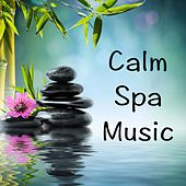 Calm Spa Music by Various Artists