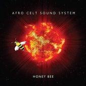 Honey Bee (Radio Edit) von The Afro Celt Sound System