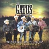 No Me Junto Con Tacuaches, Martirio y Dolor by Los Gatos De Sinaloa