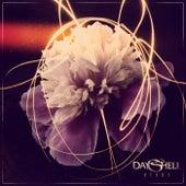 Nexus by Dayshell
